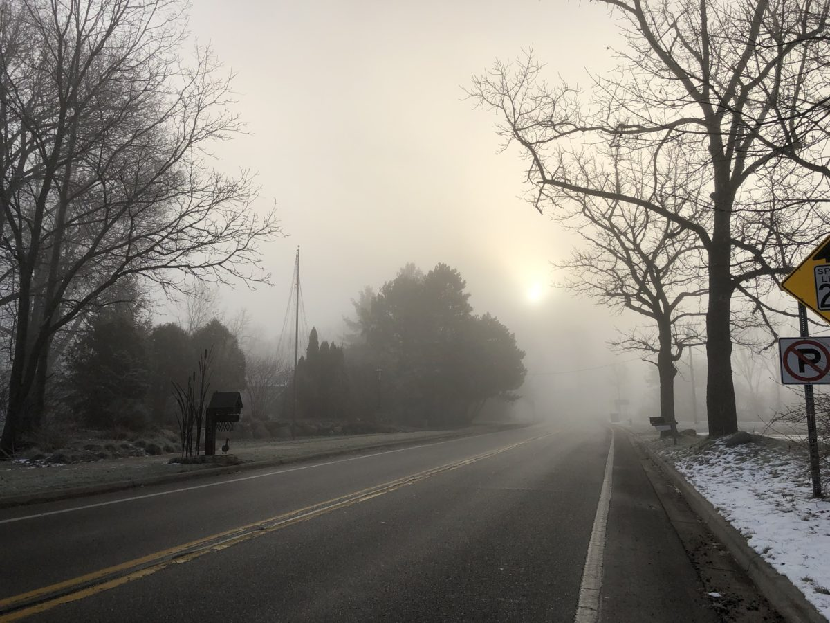 Foggy Pics from the Road